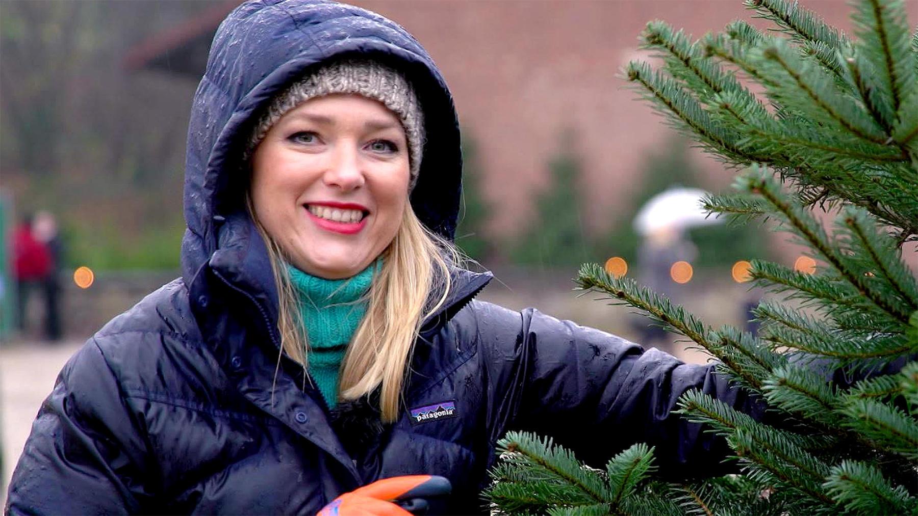 Thema heute u.a.: Wie transportiert man einen Weihnachtsbaum?
