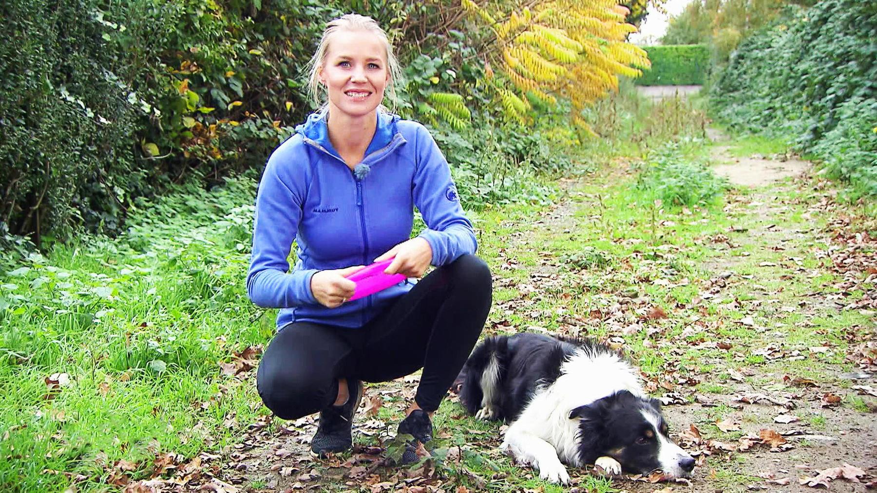 Thema u.a.: Dog Frisbee