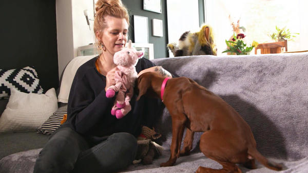 Thema u.a.: Hundespielzeuge im Test
