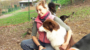 Thema u.a.: Job-Check beim Hundetrainer