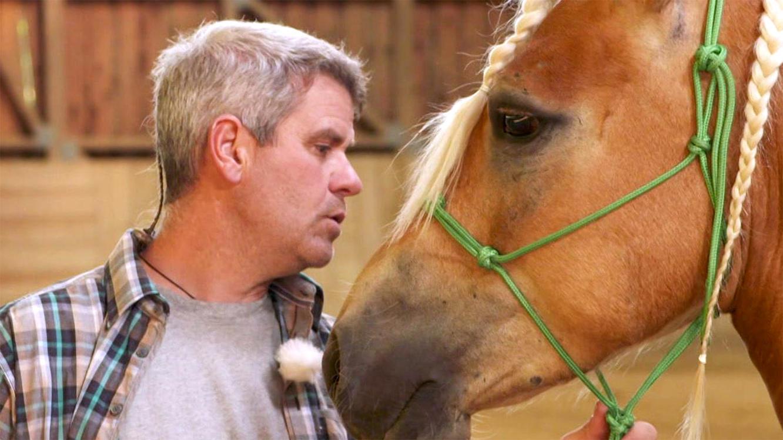 Folge 7 vom 13.03.2021 | Die Pferdeprofis | TVNOW
