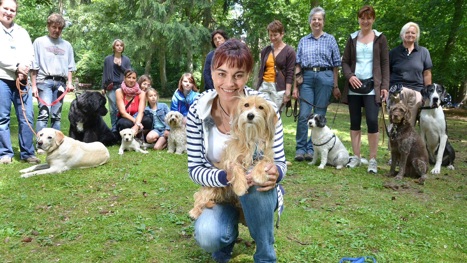 Hundeführerscheinpflicht in Niedersachsen