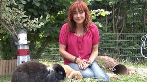 Thema u.a.: Kaninchen