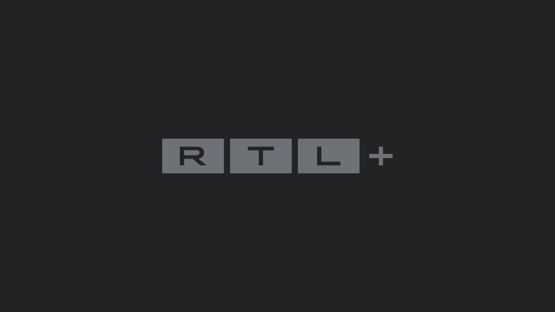 Shopping Queen Bachelor