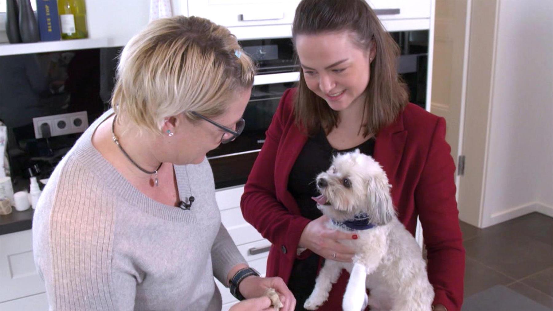 Heute u.a.: Checkpunkte - Wann ein Tier zum Tierarzt muss?