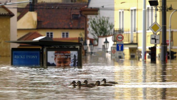 Phänomen Hochwasser | Folge 5