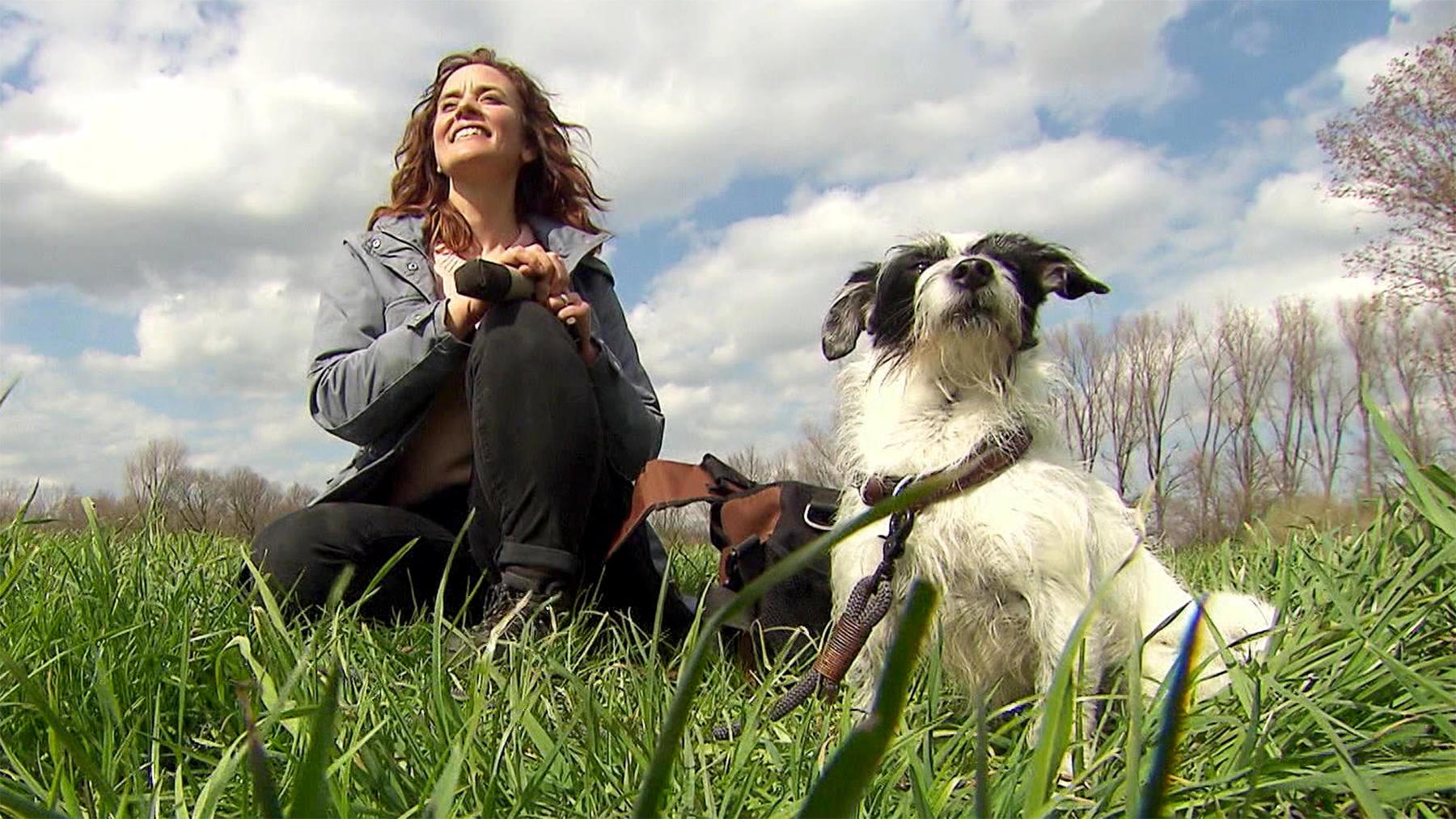 Heute u.a.: Hundesport-Trend Dummy-Training