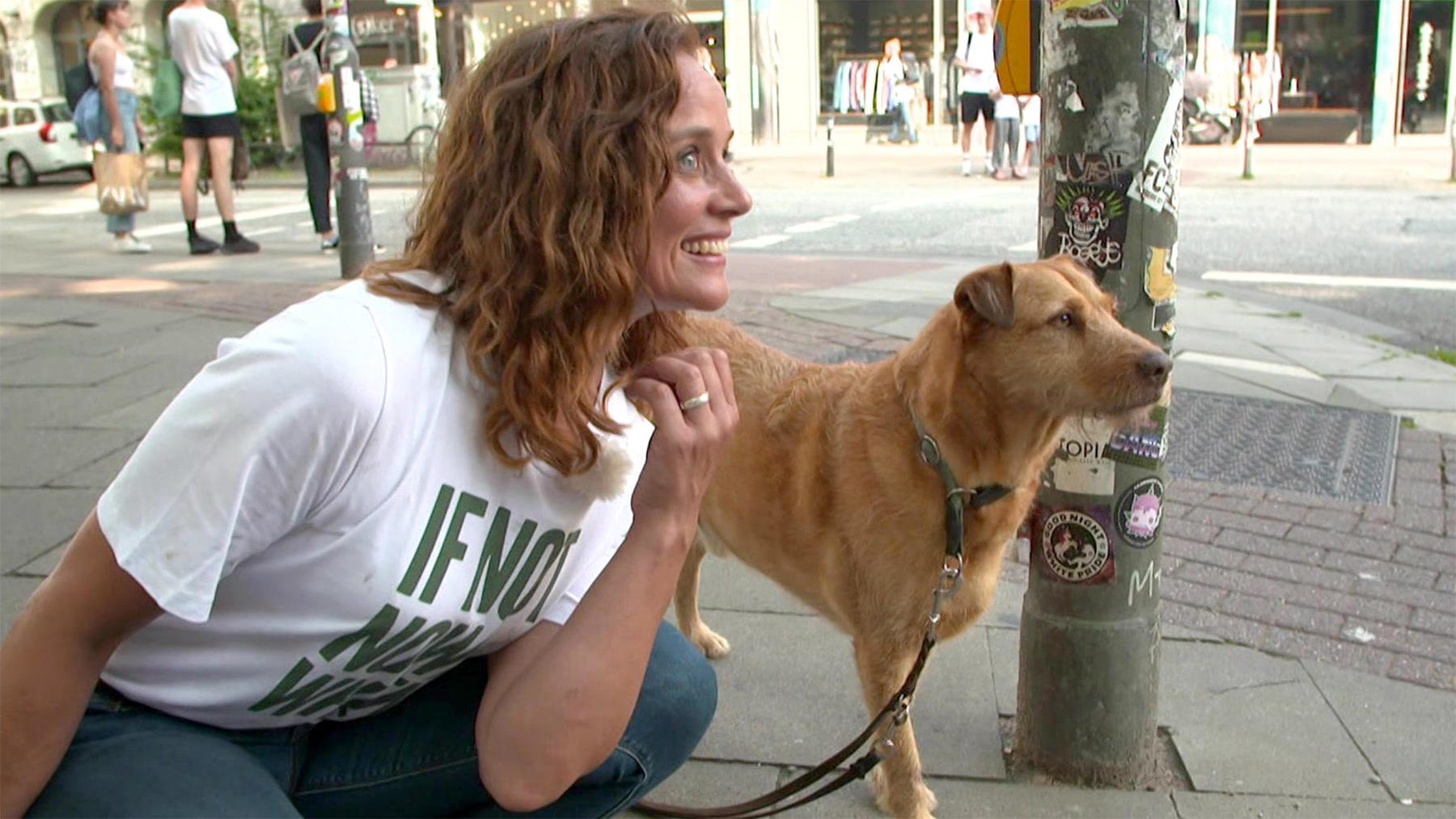 Heute u.a.: Hunde in der Großstadt